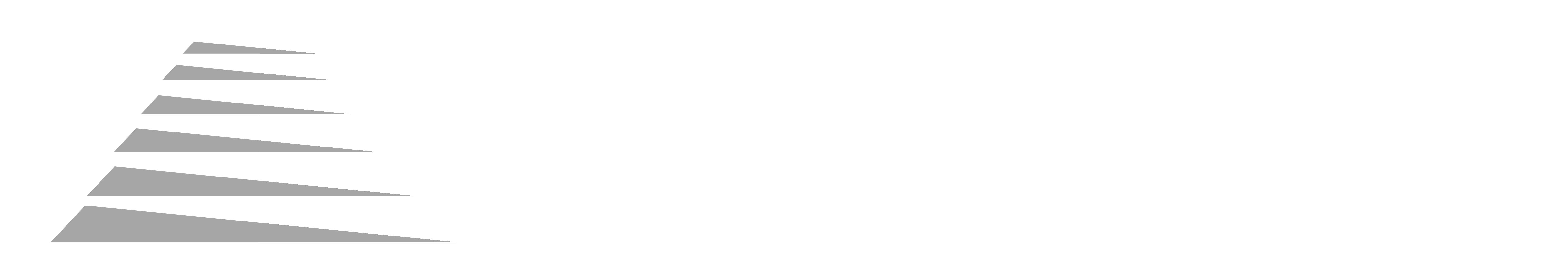 Bouchard Diffusion logo blanc